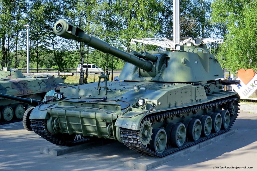 152 мм Акация (Шаховская) _80.JPG