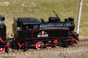 42 паровоз  9П-19499 (Щербинка, авг2019) _900.JPG