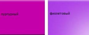 Как выглядит пурпурный цвет фото