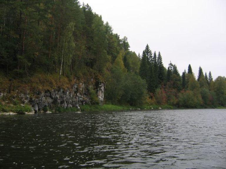 тронутый-осенью-лес
