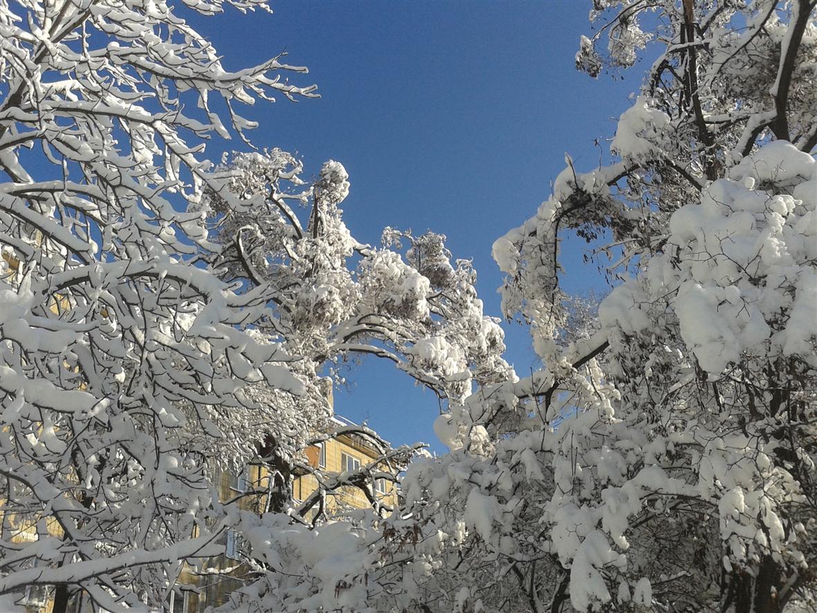 Д_зима01