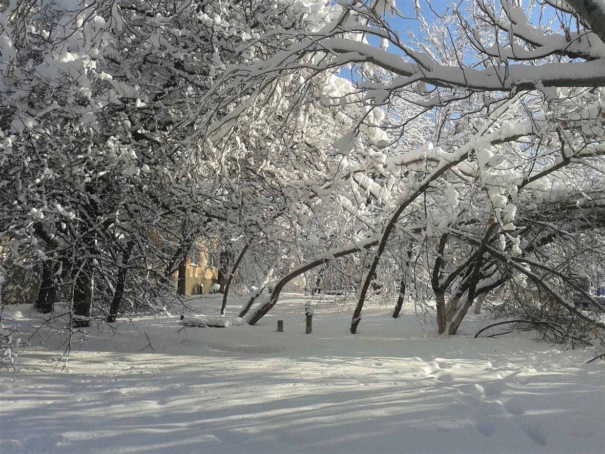 Д_зима02