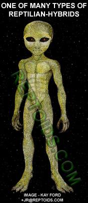 ReptilianHybrid_4web