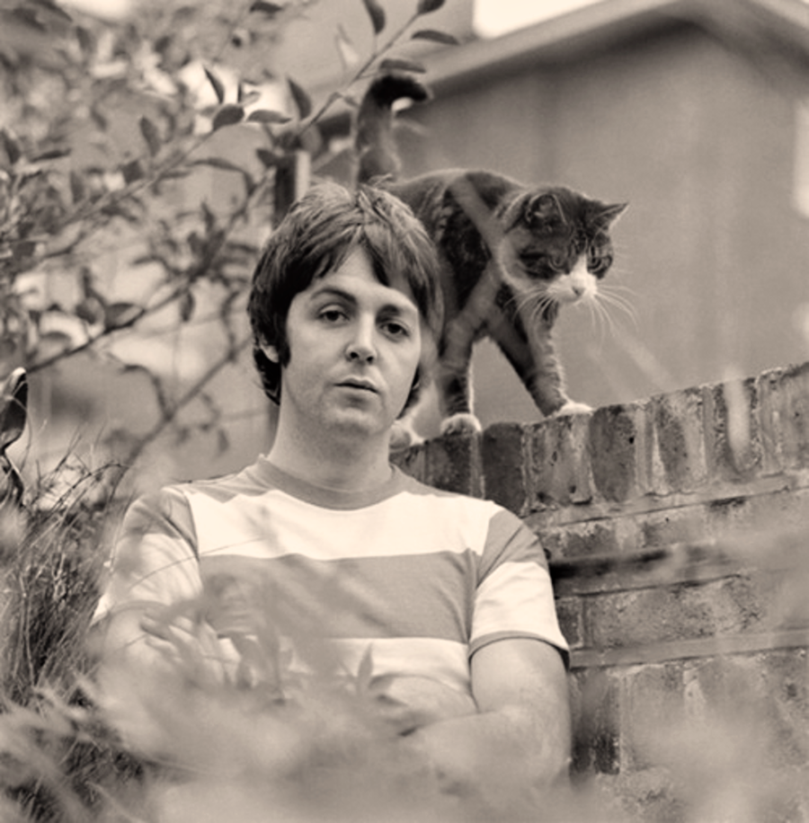 McCartney73