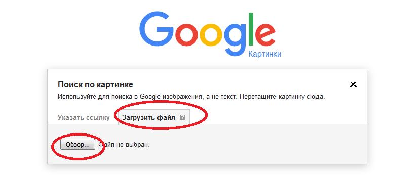 Поиск машин по номерам россия с фото наряды