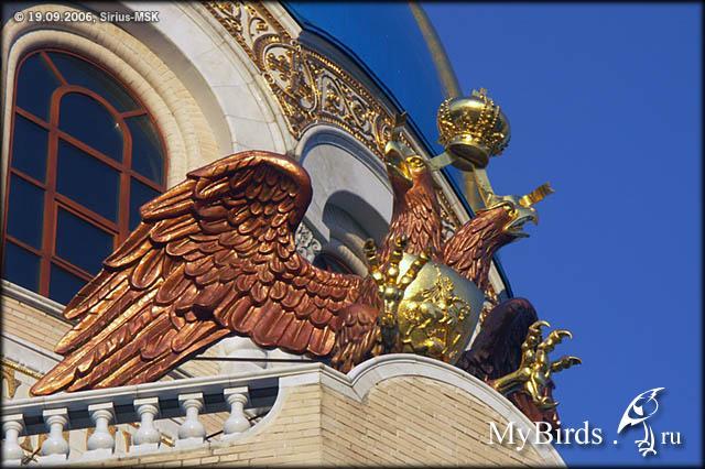 Москва храм Живоначальной Троицы