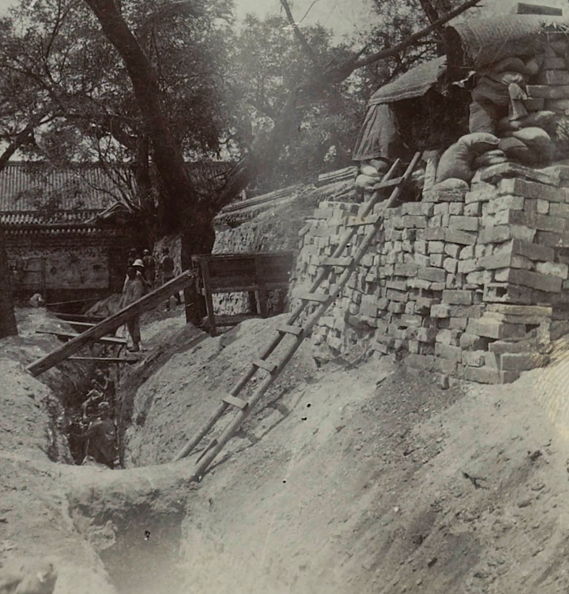 1900 6