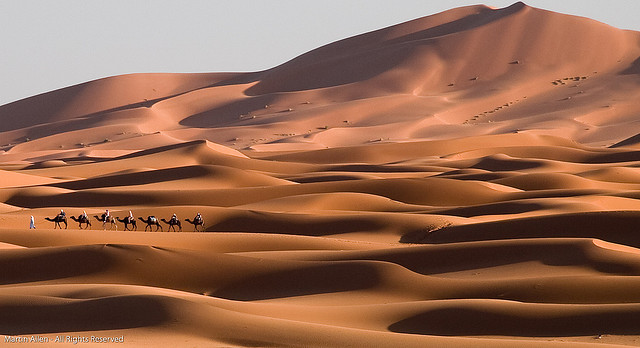 09 Пустыни