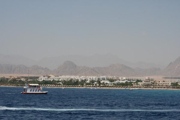 Египет 551