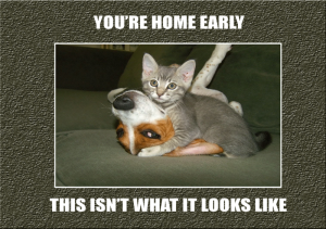 homeearly1280x900.PNG