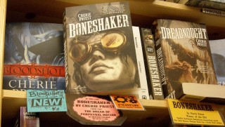 Also recommended: the novels of Cherie Priest