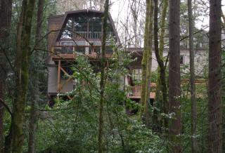 Re-approaching civilization, in Marquam Nature Park