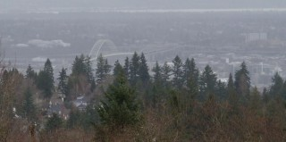 Fremont Bridge, a bridge as old as I am, as seen from Council Crest.