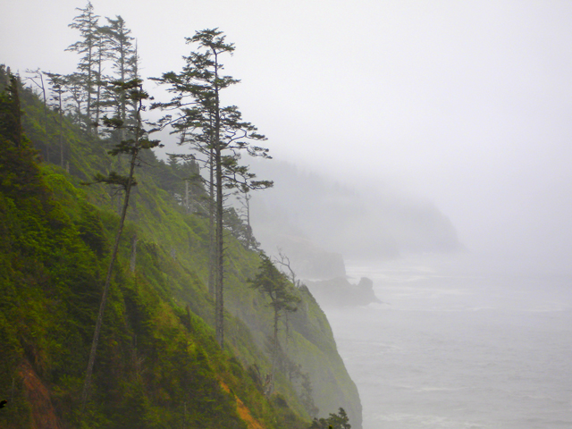 Fog, Cliffs and Trees, Cape Lookout, Oregon