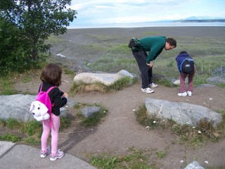 Looking at the little creatures near the mud flats