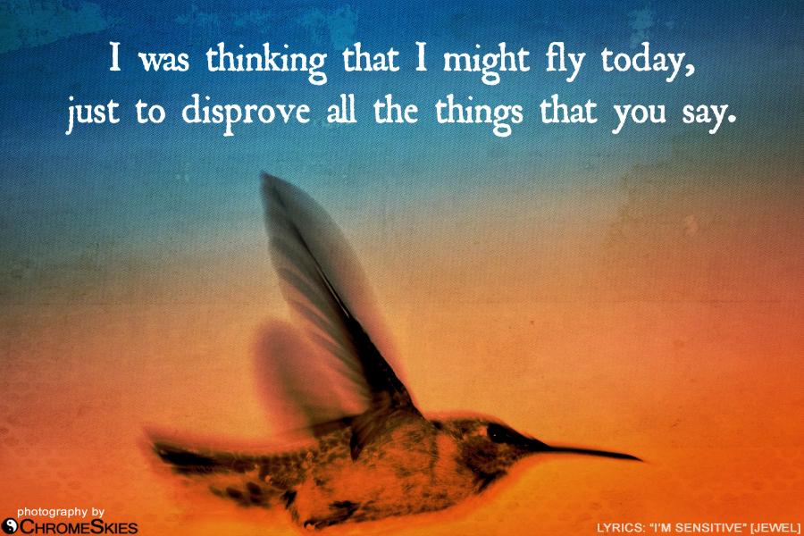 lyrics_sensitive_hummingbird