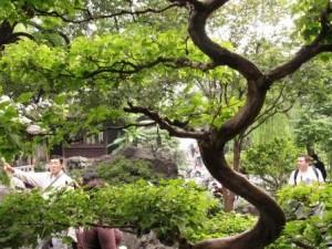 shanghai013