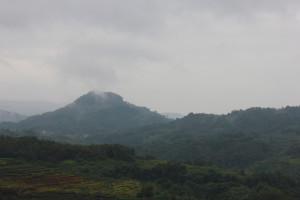 Холмы, наполненные духом чая, оказались прекрасны даже в эту дождливую погоду