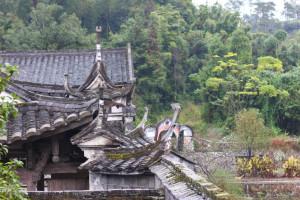 Природа и культура. В китайской культуре меня всегда поражает обилие деталей.