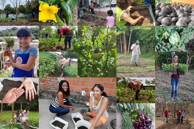 FUNDAEC, организация из Колумбии, опирающаяся в своей деятельности на идеи бахаи, осознавая, что пандемия будет длиться ещё долго, задумалась о том, как она могла бы принести практическую пользу обществу в эти нелёгкие времена. Начав активно работать в этом направлении ещё в марте, они помогли более чем двум тысячам людей по всей стране принять участие в более чем тысяче сельскохозяйственных инициатив.