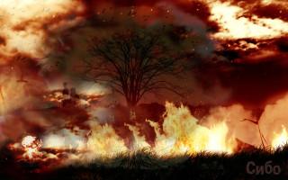 ночь вечного огня