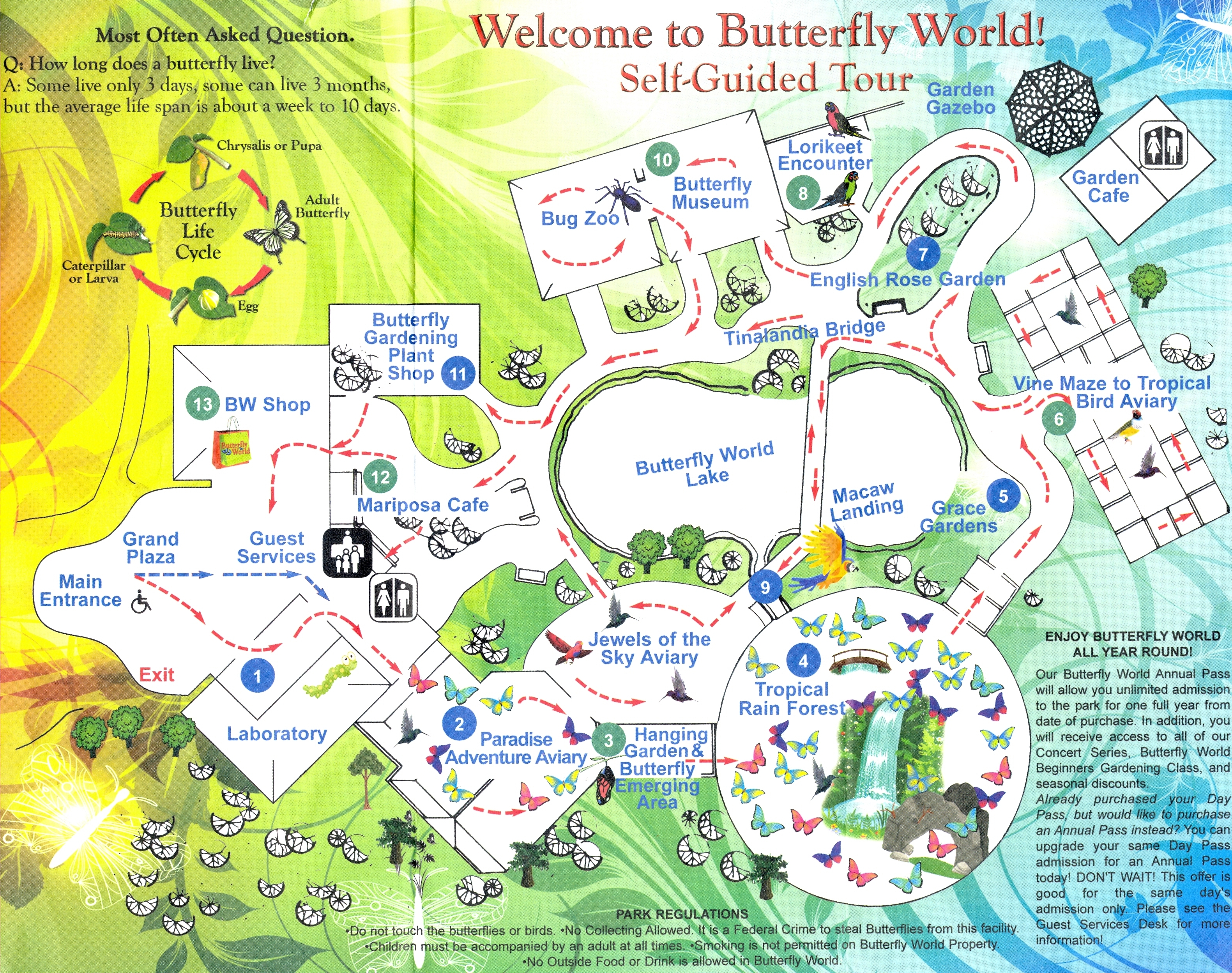 ButterflyWorld