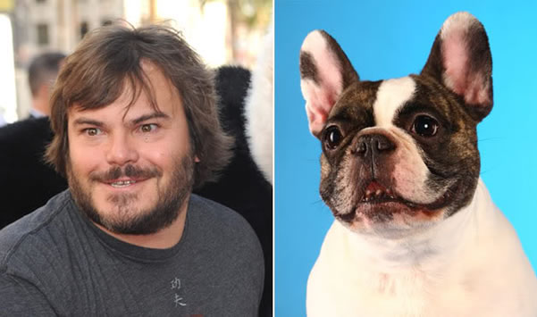 celebrity_dog_look-aike_1