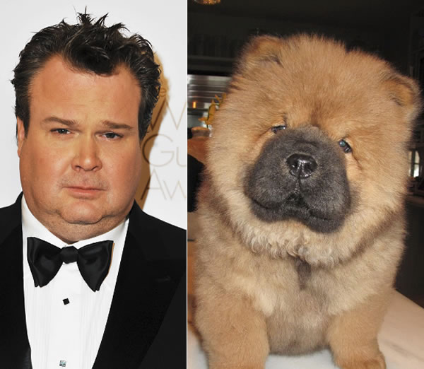 celebrity_dog_look-aike_2