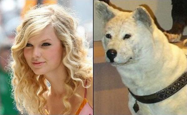 celebrity_dog_look-aike_10