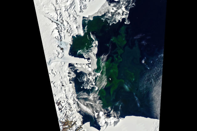 antarctica_amo_2020021_lrg-640x427.jpg