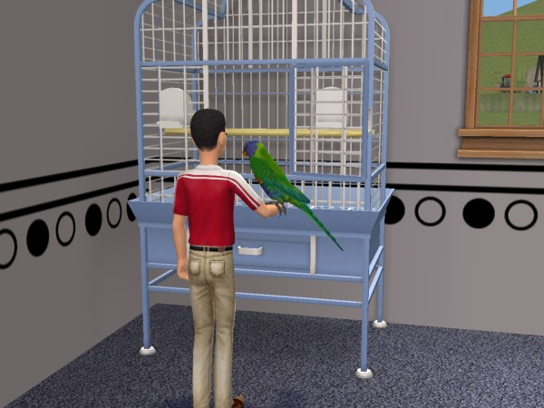 Ulrich and Rainbow the parrot
