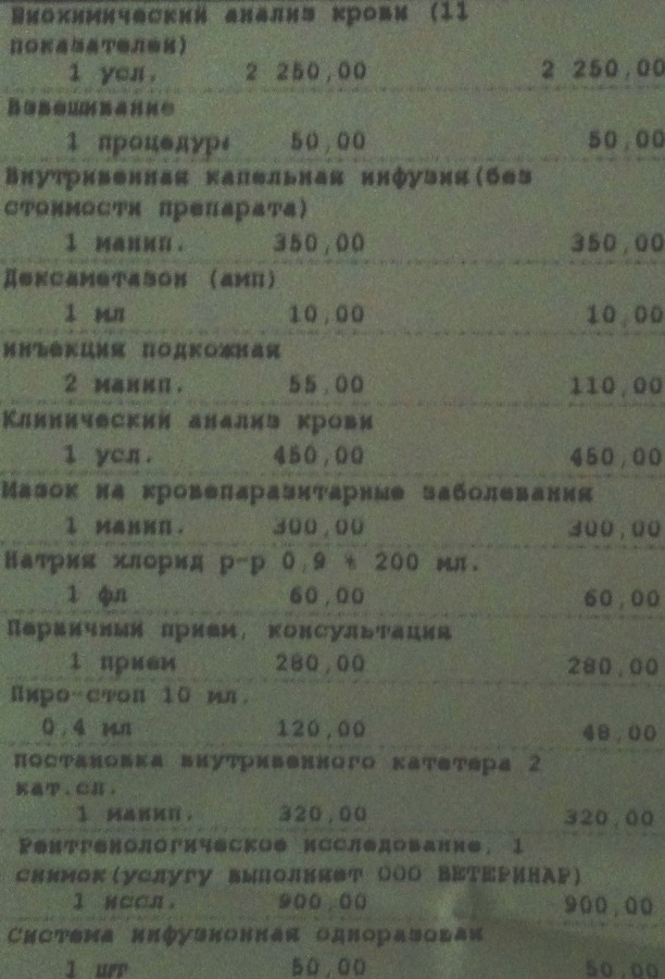 IMG_1783