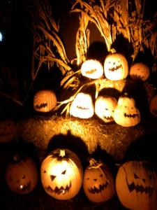 Pumpkins02