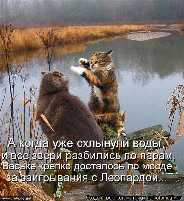 kotomatrix_000522