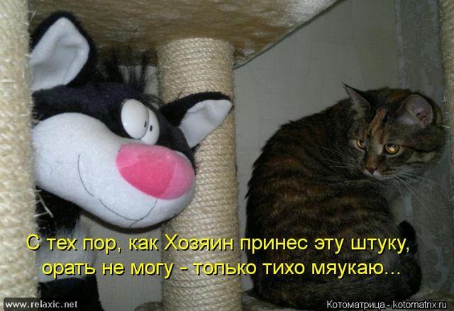 kotomatrix_000532