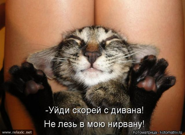 kotomatrix_000552