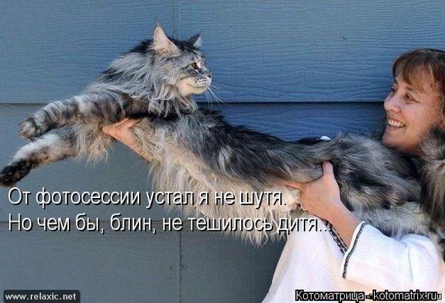 kotomatrix_000562