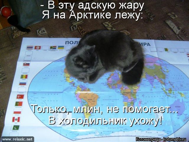 kotomatrix_000602