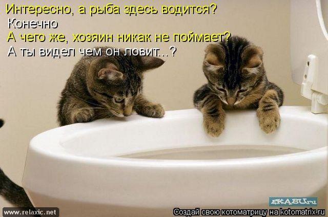 kotomatrix_000612