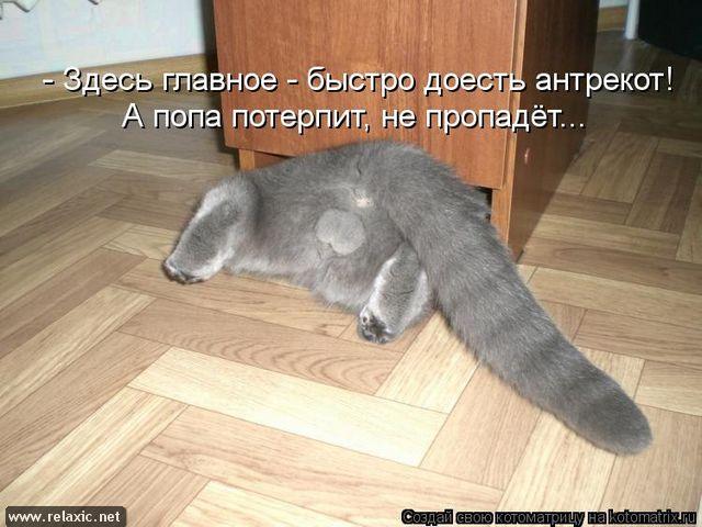 kotomatrix_000622