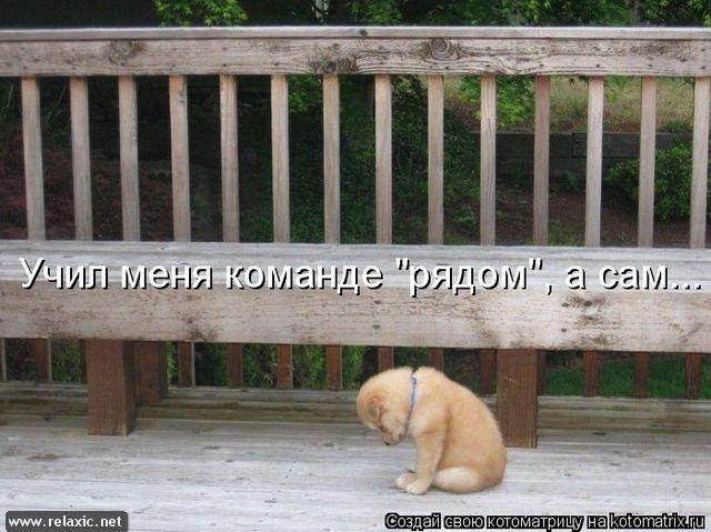 kotomatrix_00118