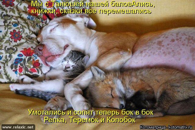 kotomatrix_00122