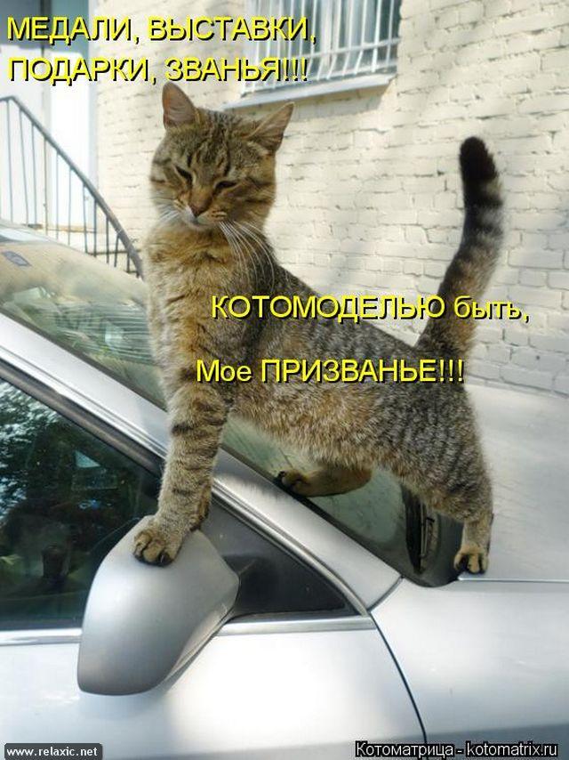 kotomatrix_00126