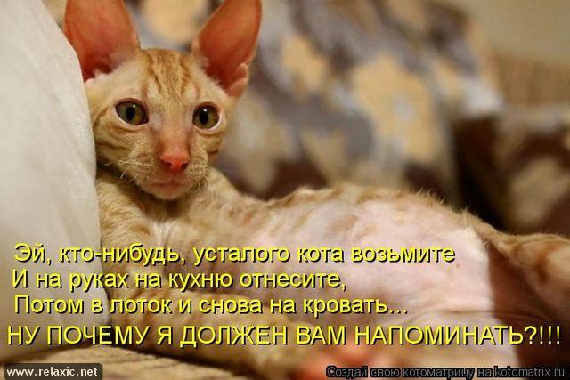 kotomatrix_000752