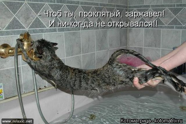 kotomatrix_000792