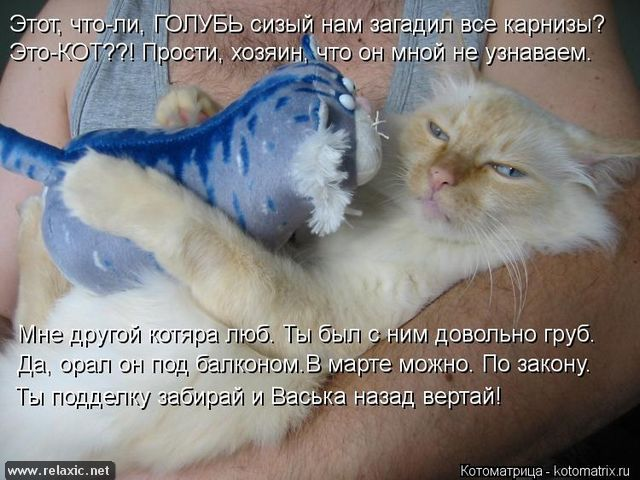 kotomatrix_000862