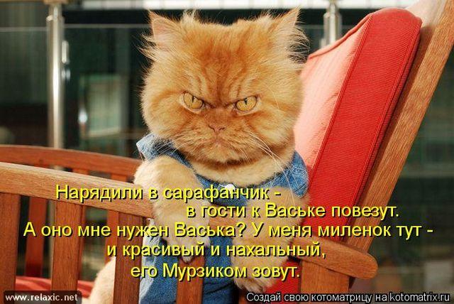 kotomatrix_000872