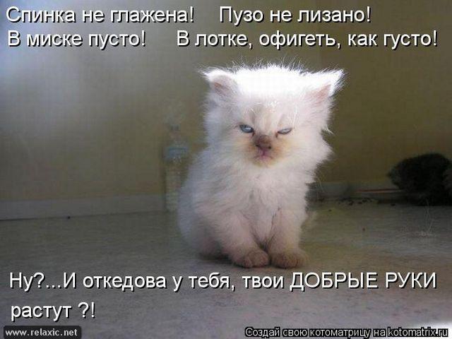 kotomatrix_000882