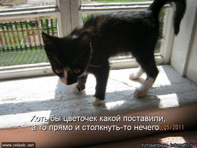 kotomatrix_000992