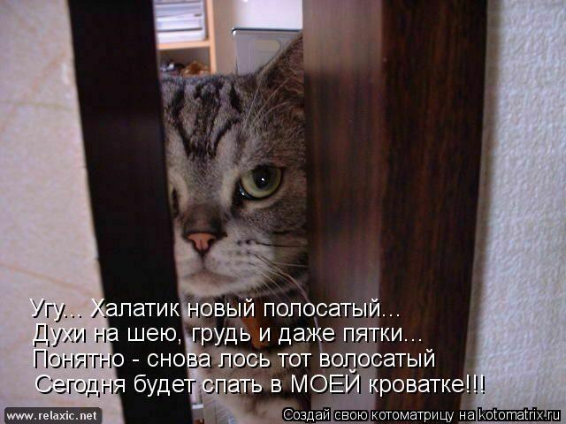 kotomatrix_001002